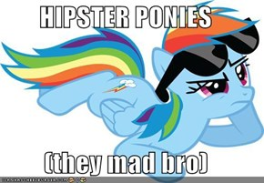 HIPSTER PONIES  (they mad bro)