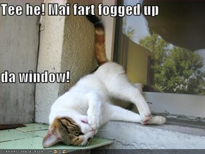 Tee he! Mai fart fogged up da window!