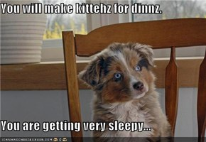 You will make kittehz for dinnz.  You are getting very sleepy...