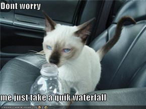 Dont worry  me just take a quik waterfall