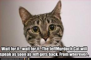 Wait for it...wait for it...The JeffMurdoch Cat will speak as soon as Jeff gets back. From wherever .