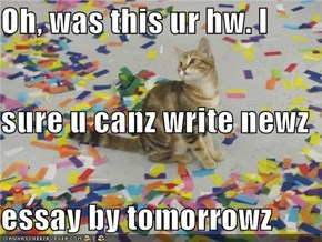 Oh, was this ur hw. I  sure u canz write newz essay by tomorrowz