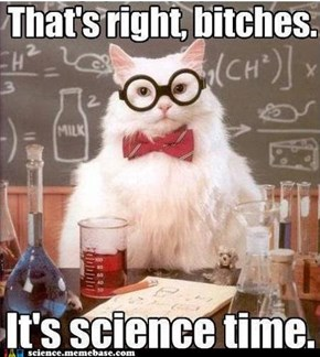 Chemistry Cat: Are You Ready?