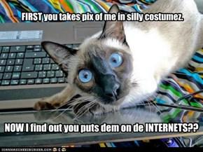 NOW I find out you puts dem on de INTERNETS??