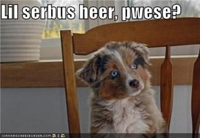 Lil serbus heer, pwese?