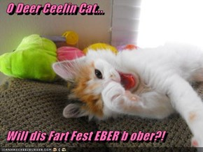O Deer Ceelin Cat...    Will dis Fart Fest EBER b ober?!
