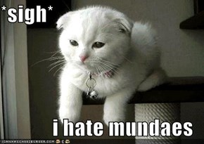 *sigh*  i hate mundaes