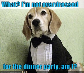 What? I'm not overdressed  for the dinner party, am I?