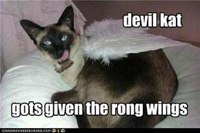 devil kat