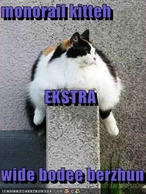 monorail kitteh EKSTRA wide bodee berzhun