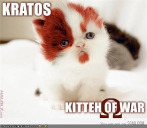 KITTEH OF WAR!!!