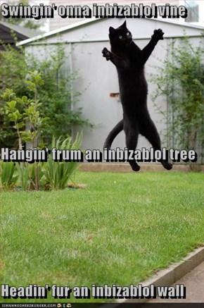 Swingin' onna inbizablol vine Hangin' frum an inbizablol tree Headin' fur an inbizablol wall