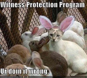 Witness Protection Program  Ur doin it wrong.