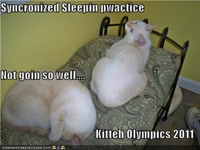 Syncronized Sleepin pwactice Not goin so well.... Kitteh Olympics 2011