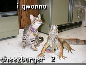i gwanna  cheezburger  2