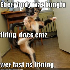 Eberybudy waz kungfu fiting, does catz  wer fast as litning