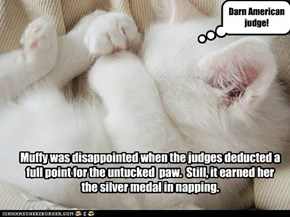 Muffy was disappointed when the judges deducted a full point for the untucked  paw.  Still, it earned her the silver medal in napping.