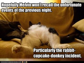 Melvin's night out