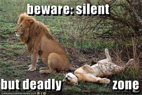 beware: silent  but deadly                   zone