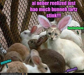 ai neber reelized just hao much bunneh fartz stink!!!
