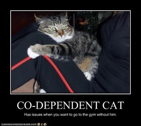 CO-DEPENDENT CAT