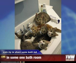cats try to share same bath tub - in some one bath room