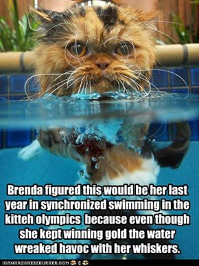 Brenda figured this would be her last year in synchronized swimming in the kitteh olympics  because even though she kept winning gold the water wreaked havoc with her whiskers.
