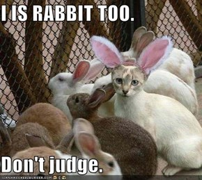I IS RABBIT TOO.  Don't judge.