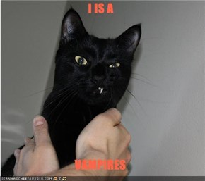 I IS A   VAMPIRES