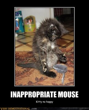 INAPPROPRIATE MOUSE