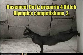 Kitteh Olympics: A Challenger Appears