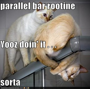 parallel bar rootine Yooz doin' it . . . sorta