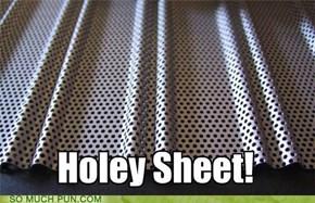 Hole-y Sheet!