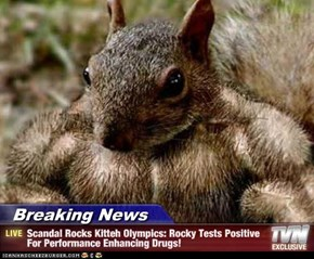 Breaking News - Scandal Rocks Kitteh Olympics: Rocky Tests Positive For Performance Enhancing Drugs!