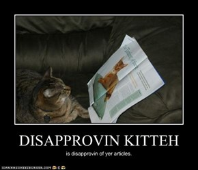 DISAPPROVIN KITTEH