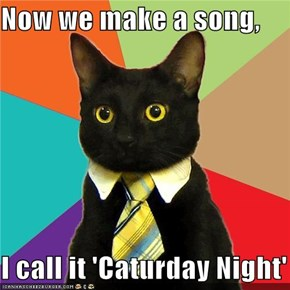Now we make a song,  I call it 'Caturday Night'