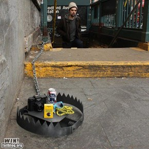 Hipster trap win!