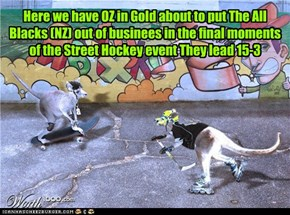 Kitteh Olympics 2011Street Hockey