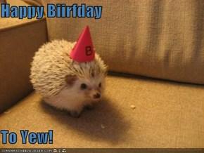Happy Biirfday  To Yew!