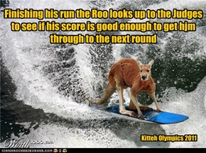 Kitteh Olympics 2011 Surfing