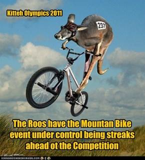 Kitteh Olympics 2011