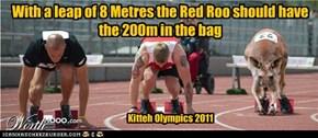 Kitteh Olympics 2011 200 Metres