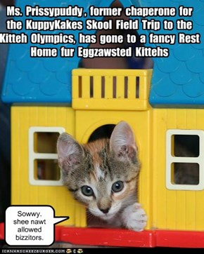 KKPS Field Trip to Kitteh Olympics