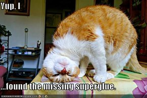 Yup, I  ...found the missing superglue.
