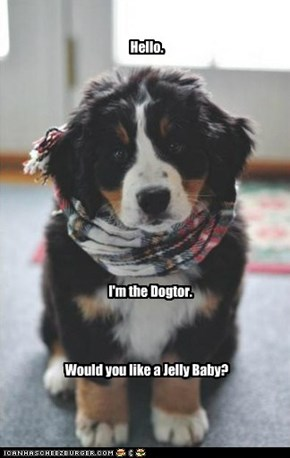 Doctor Woof?