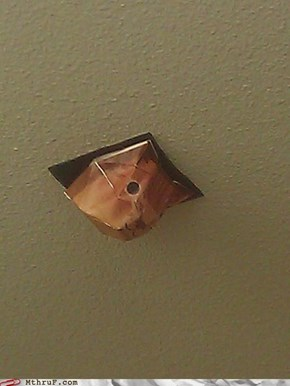 Paper Ceiling Cat is Watching You