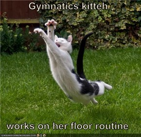 Gymnatics kitteh  works on her floor routine
