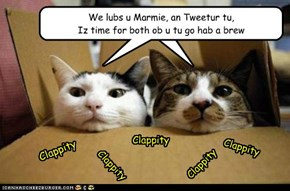 Kitteh Olympics - For Marmie and Tweetur from the Spectators