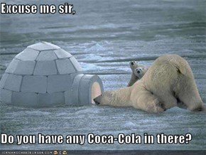 Excuse me sir,  Do you have any Coca-Cola in there?