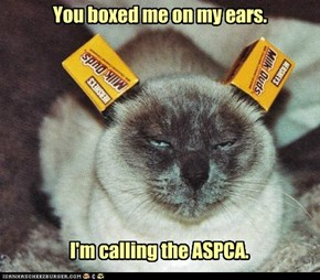 You boxed me on my ears.